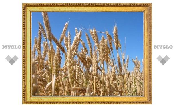 В Туле внимание молодежи будут привлекать к проблемам сельского хозяйства