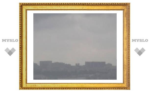 19 января: Небо пасмурно - лето в Туле будет плодородно