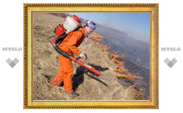 В Тульской области начались полевые пожары
