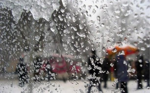 В Тульской области объявлен «оранжевый» уровень погодной опасности
