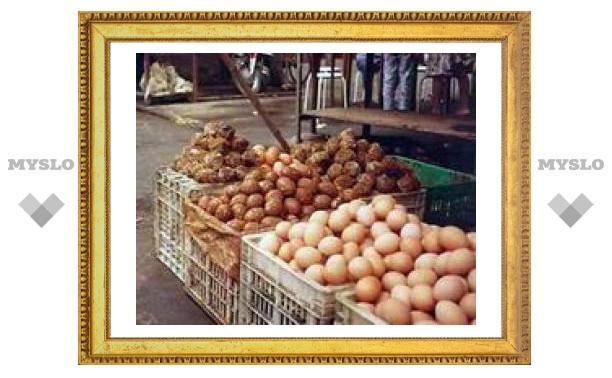 Еда дорожает: развивающиеся страны в ответ прибегают к ограничению цен