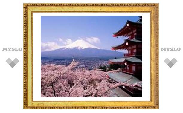 Тульские студенты напишут сочинения на тему Японии