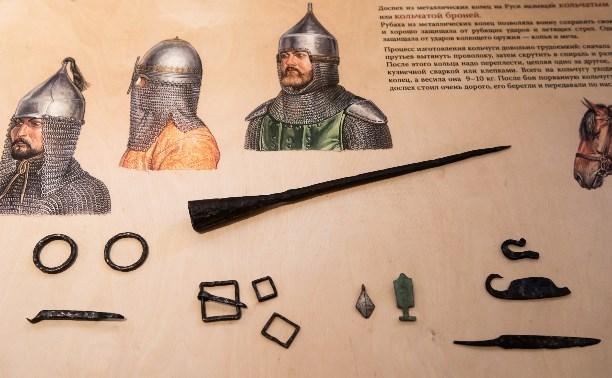 В фондах музея «Куликово поле» нашли золотоордынскую пику