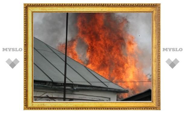 Под Тулой дети едва не спалили дом
