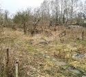 Земельный участок в Баташевском саду продают за 11 миллионов рублей