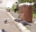Новая строка за вывоз мусора появится в квитанциях в 2018 году