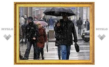 Сегодня в Туле пасмурно и дождь