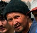 На жителя поселка Плеханово нелегально работали мигранты