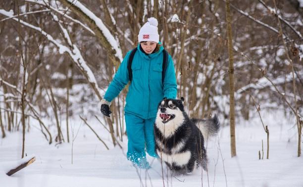В Тулу вернётся зимняя погода