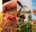 Туляков приглашают обсудить развитие сельского хозяйства в регионе