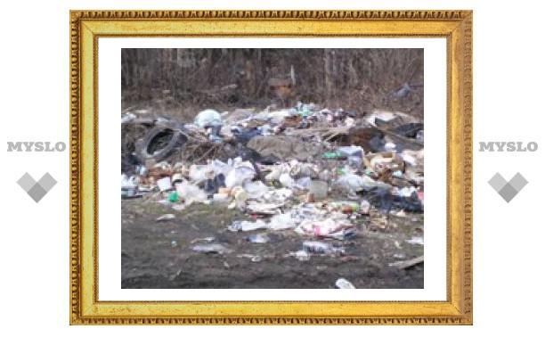 Горы мусора под окнами