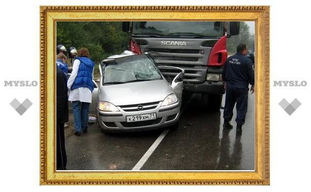 """Под Тулой водитель """"Опеля"""" погубил пассажира, выехав на встречку"""