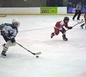 В Новомосковске пройдут хоккейные матчи на Первенство ЦФО
