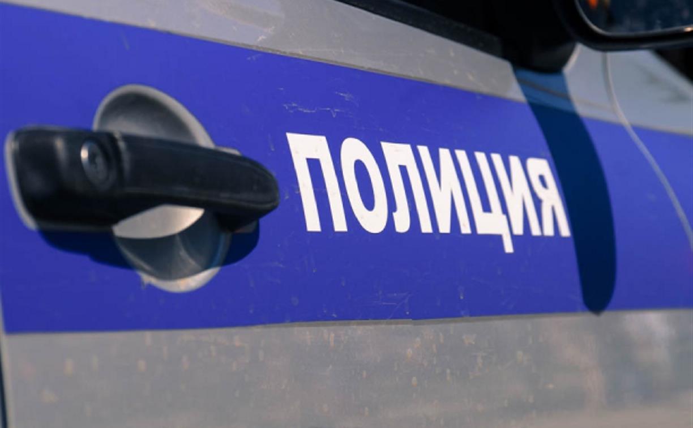 Тульские полицейские задержали двух грабителей