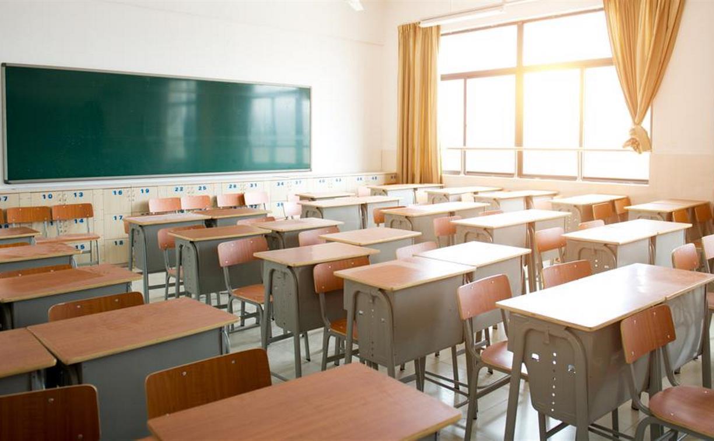 В тульских школах на дистанционку переведены почти 1900 учеников