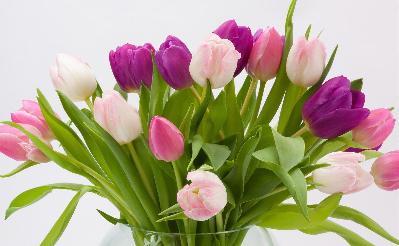 «Город Мастеров» поздравляет милых женщин с 8 Марта!