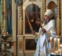 Митрополит Тульский и Ефремовский Алексий обратился к тулякам с рождественским посланием