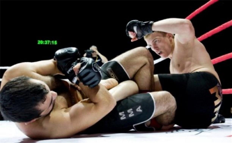 Бойцы из Тулы заняли второе общекомандное место на турнире в Химках