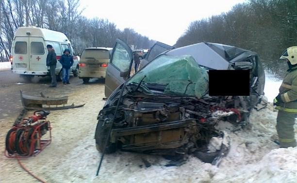 В Плавском районе столкнулись минивэн и легковушка: двое погибли