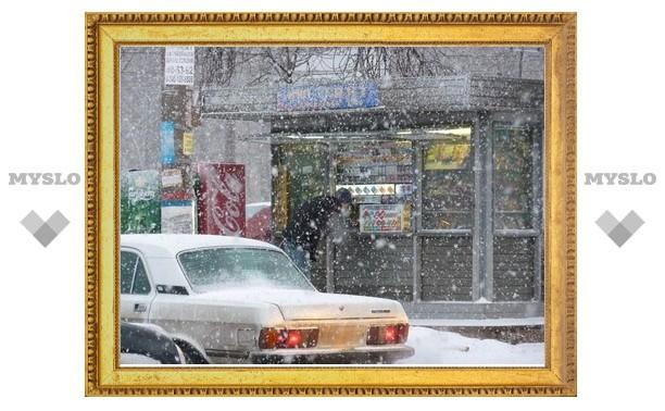 Тулу завалит мокрым снегом