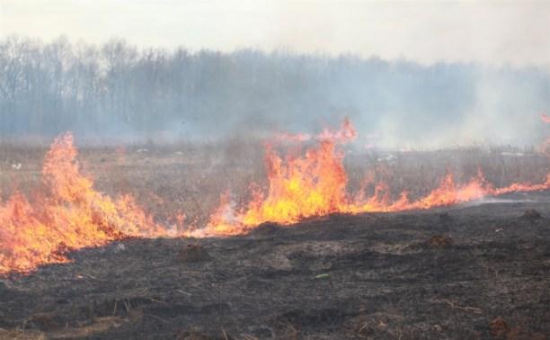 В регионе ввели «особый противопожарный режим»