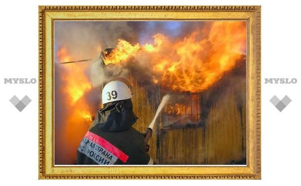 Крупный пожар унес жизни двух человек