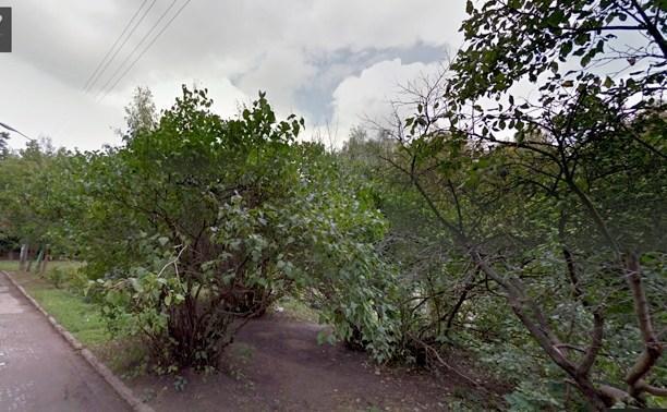 Рогожинский парк станет памятником природы