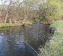 Киреевский ветсанутильзавод незаконно сбрасывал вредные вещества в реку Вьевку