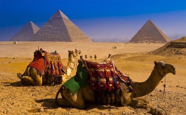 Ростуризм: «Речь об экстренной эвакуации туристов из Египта не идет»