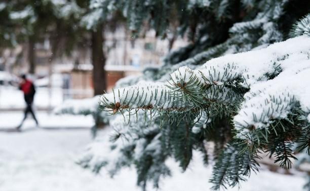 Тулу замело мартовским снегом: фото и видео