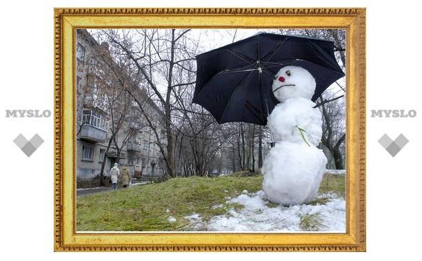 Русская зима в Туле снова отменяется