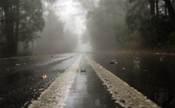 Погода в Туле 25 июля: дождь с грозой, туман и пониженное давление
