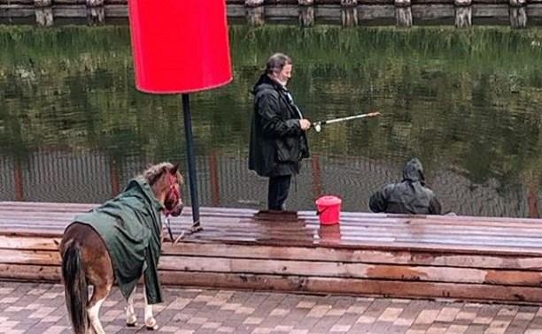 На Казанской набережной прогулялся «конь в пальто»