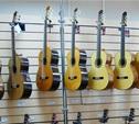 Житель Новомосковска украл гитару