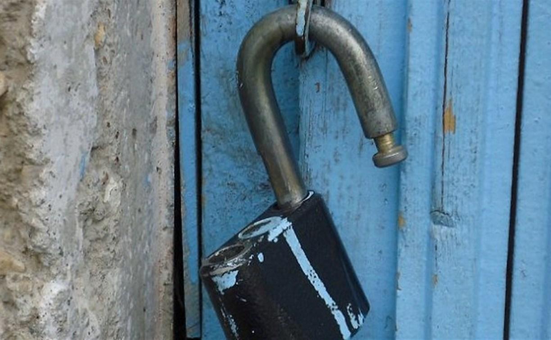 В Ефремовском районе трое грабителей украли бензопилу из частного дома
