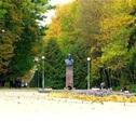 Центральную эстраду Белоусовского парка ждет реконструкция