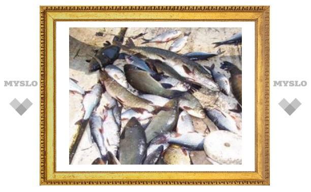 Ученые: регулярное употребление рыбы и морепродуктов смертельно опасно