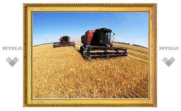 Российские власти не будут фиксировать цены на хлеб и муку