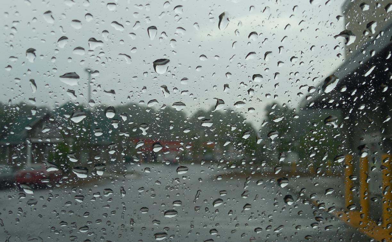 Погода в Туле 17 апреля: дожди, грозы и ветер