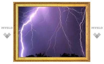 Под Тулой молния подожгла дачу