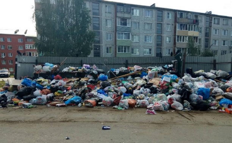 Почему в Щёкино перестали вывозить мусор