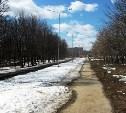 Ветераны из Новомосковска выступили против переименования местного сквера