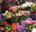 В Туле в предпраздничные дни будут работать ярмарки по продаже цветов
