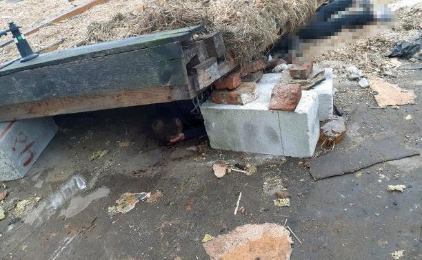 В Ясногорске рухнувшая крыша придавила двух мужчин