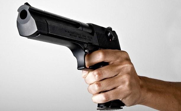 Житель Узловского района осуждён за незаконное ношение оружия и покушение на убийство