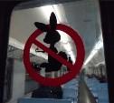 «Зайцев» из электричек хотят отдавать под суд