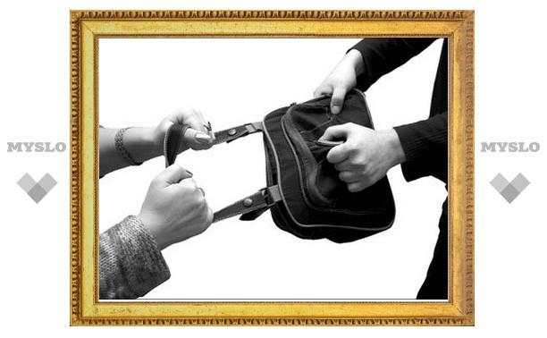 Под Тулой задержали «новогодних грабителей»