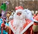 В Центральном парке выбрали лучшего Деда Мороза