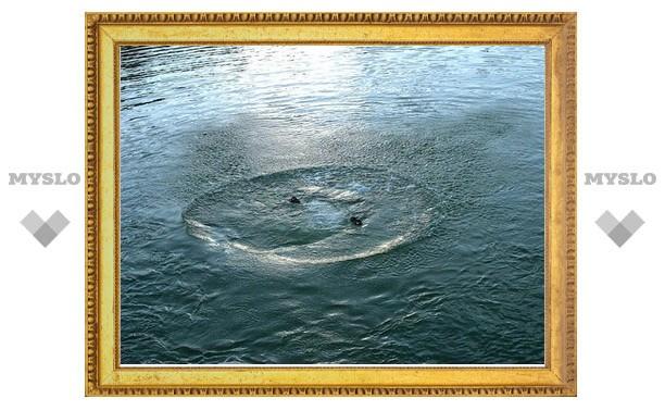 В пруду Центрального парка утонул мужчина