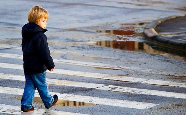 В Тульской области проходит операция ГИБДД «Внимание, дети!»
